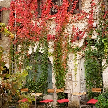 Autumn in Eze Village | LEICA SUMMICRON 35MM F2 ASPH <br> Click image for more details, Click <b>X</b> on top right of image to close