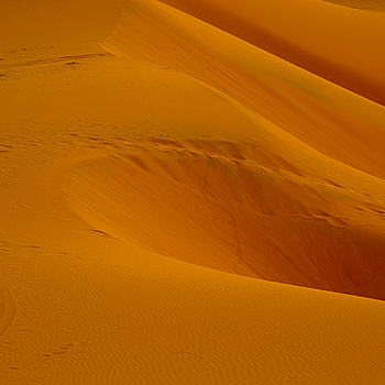Saharan Dunes | LEICA ELMARIT 90MM F2.8 <br> Click image for more details, Click <b>X</b> on top right of image to close