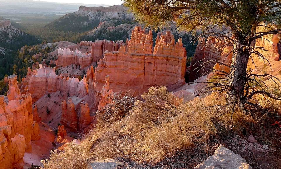 Bryce Canyon, Utah at Sunrise | LENS MODEL NOT SET <br> Click image for more details, Click <b>X</b> on top right of image to close