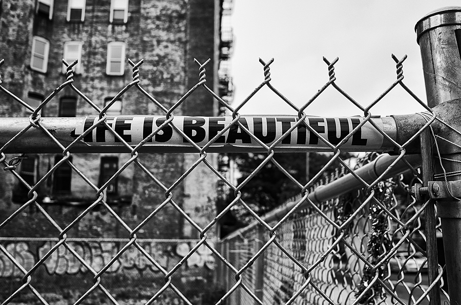 Life Is Beautiful | LEICA ELMARIT 24MM F2.8 ASPH <br> Click image for more details, Click <b>X</b> on top right of image to close