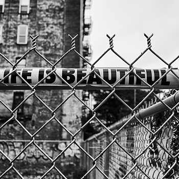 Life Is Beautiful | ELMARIT 24MM F2.8 ASPH <br> Click image for more details, Click <b>X</b> on top right of image to close