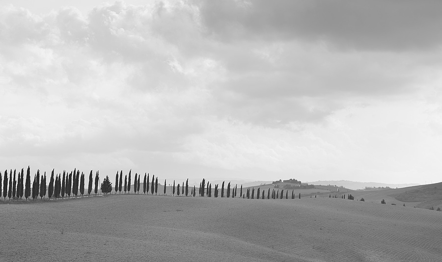 More Tuscany | UNKNOWN LENS <br> Click image for more details, Click <b>X</b> on top right of image to close