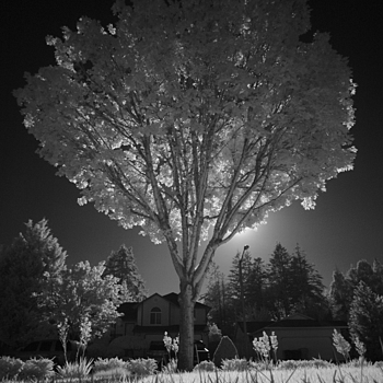 "M8 on infrared ""mode"" 