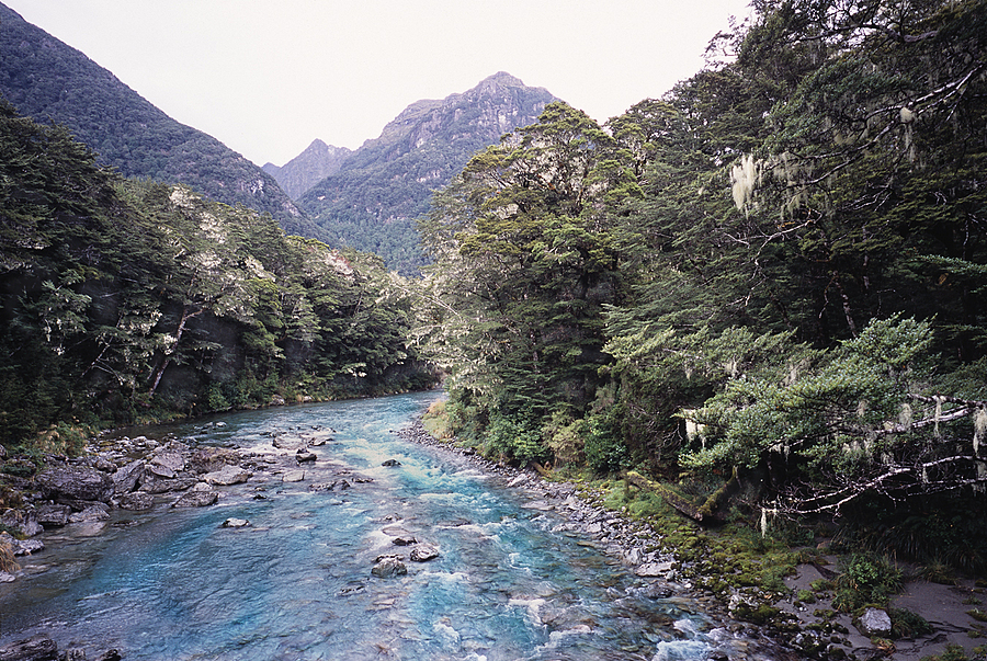 Photo: Routeburn. Fiordland Nat. Park, New Zealand | LEICA ELMAR 24MM F3.8 ASPH <br> Click image for more details, Click <b>X</b> on top right of image to close