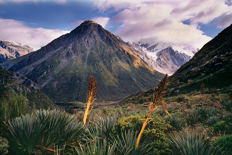 Mt. Lydia. New Zealand. | LEICA ELMAR 24MM F3.8 ASPH <br> Click image for more details, Click <b>X</b> on top right of image to close