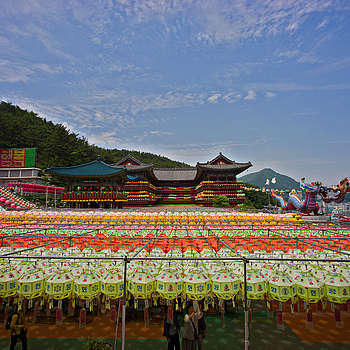 Preparing For Buddha's Birthday Festival In Busan | ZEISS ZM DISTAGON T* F2.8 15MM