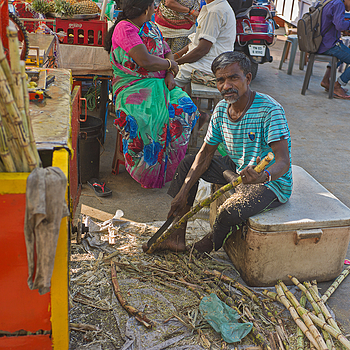 Chennai Sugar Cane Vendor | ZEISS ZM C-BIOGON F2.8 35MM